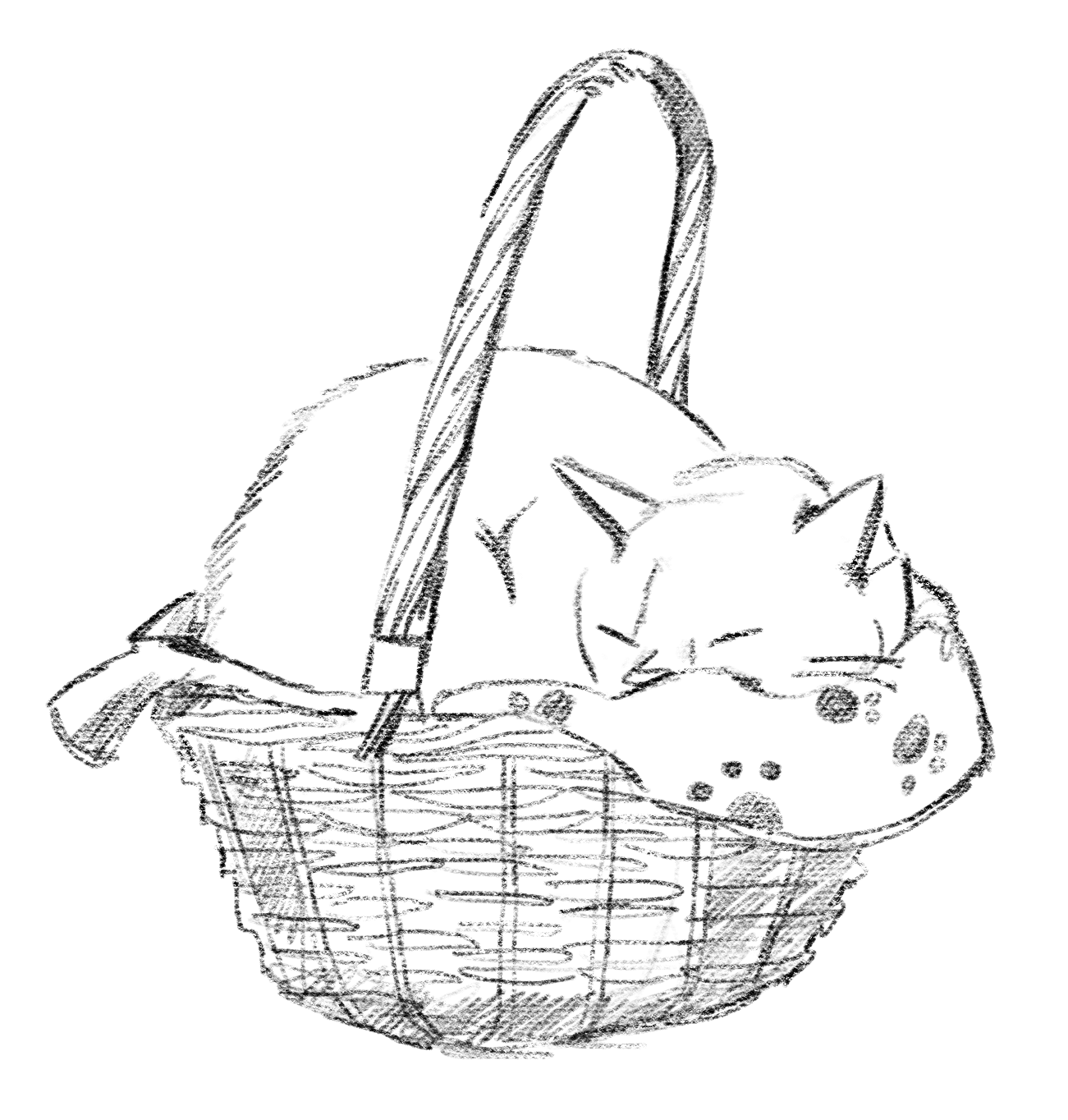 How draw from reference: Cocco in a basket 2020 by Elli Maanpää